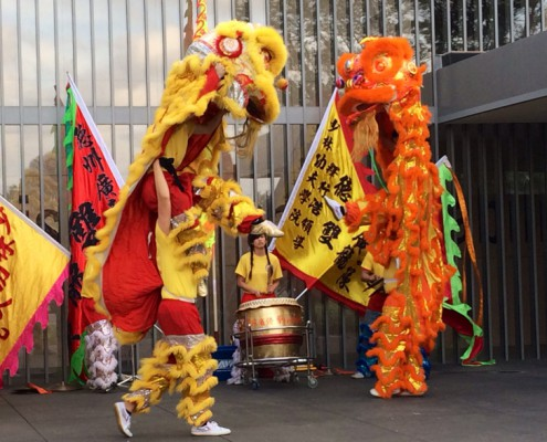 Entertainment - Houston, TX - Lion Dancers