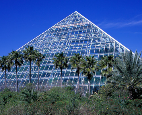 Group Activities – Houston, TX – Galveston Moody Gardens