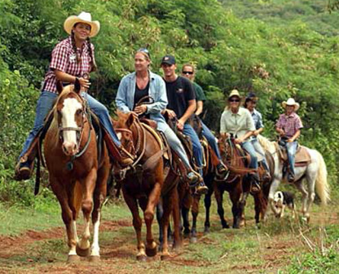 Group Activities – Houston, TX – Horseback Riding
