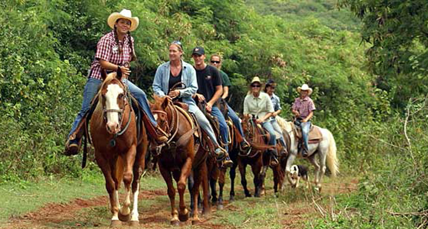 Group Activities – Houston, TX – Horseback