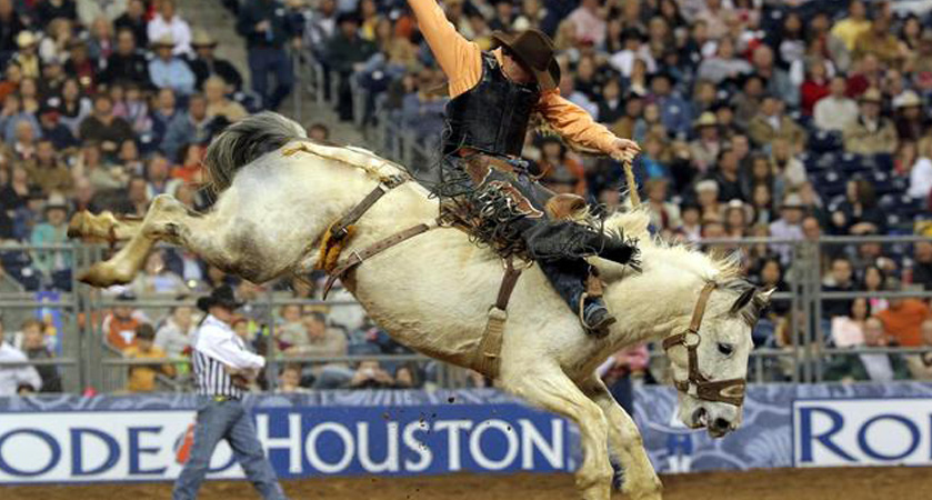 Group Activities – Houston, TX – HoustonRodeo