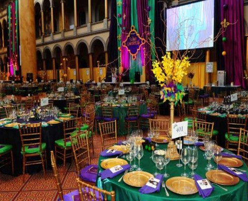 Themed Events - Houston, TX - Mardi Gras 3