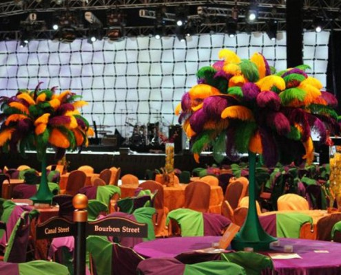 Themed Events - Houston, TX - Mardi Gras 2