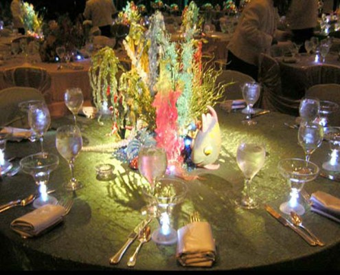 Themed Events - Houston, TX - Under The Sea