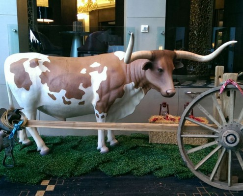 Themed Events - Houston, TX - steer photo