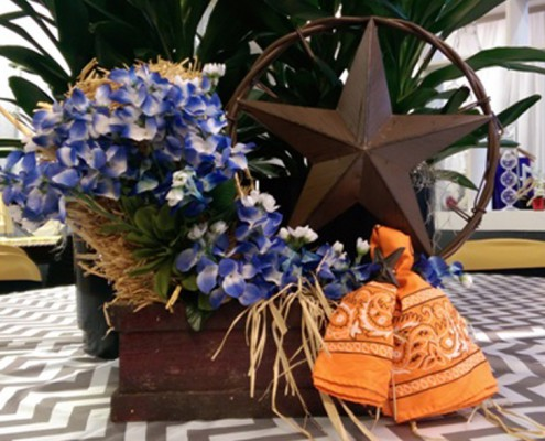 Themed Events - Houston, TX - western iron star