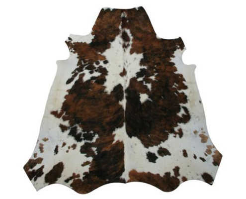 Themed Events - Houston, TX - texas cow hide