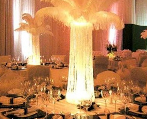Themed Events - Houston, TX - Ostrich Feathers