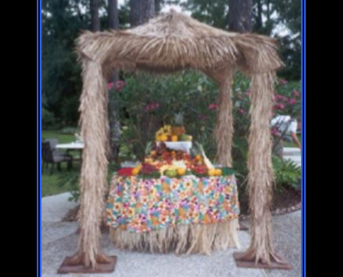 Themed Events - Houston, TX - Tropical Luau